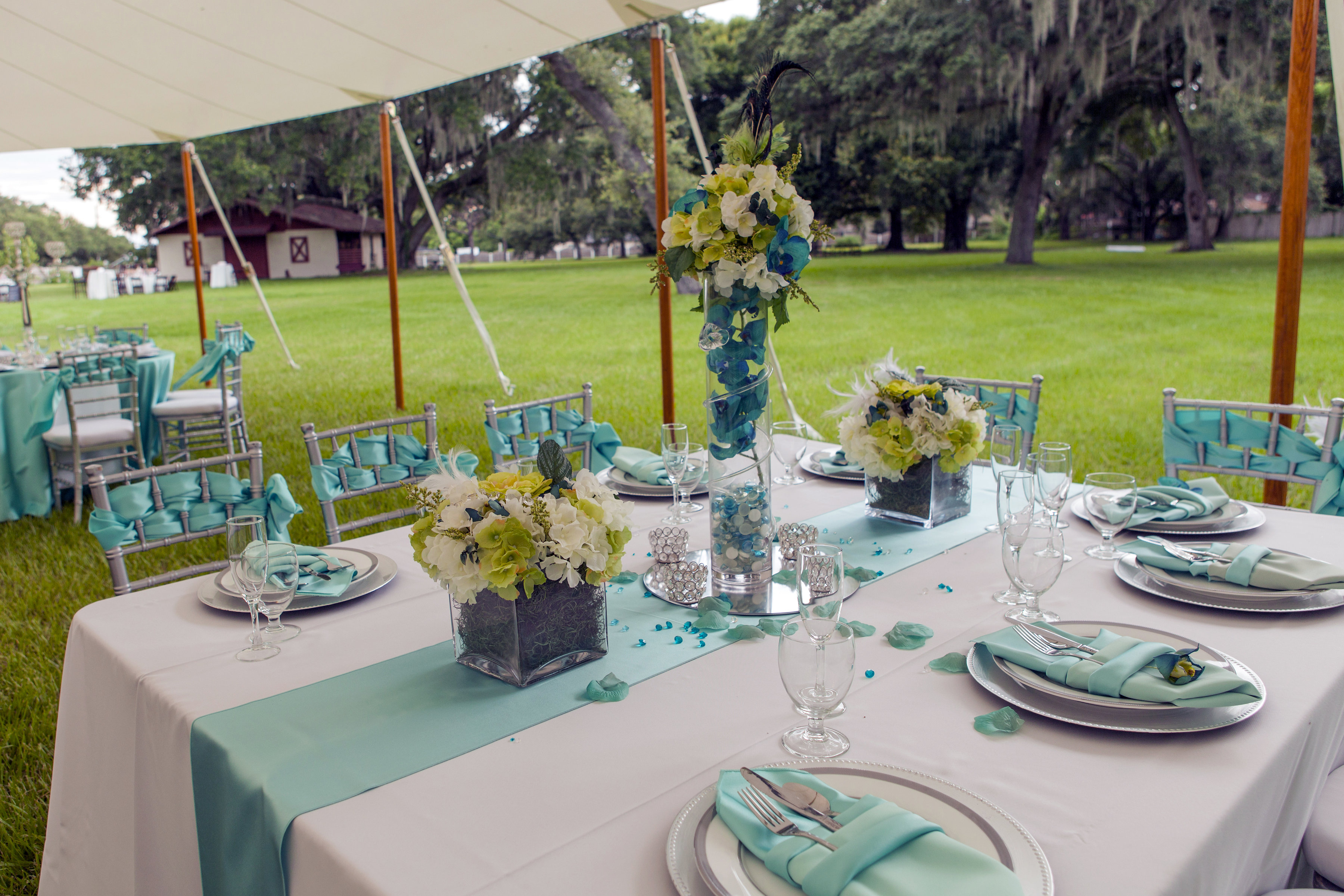 Party Rentals Tampa Bay Equipment Rental Tampa Event