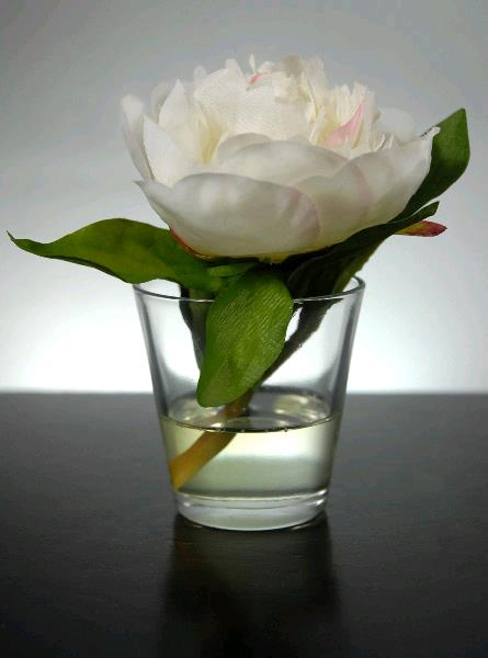 Votive Peony In Faux Water Rentals Tampa Fl Where To Rent