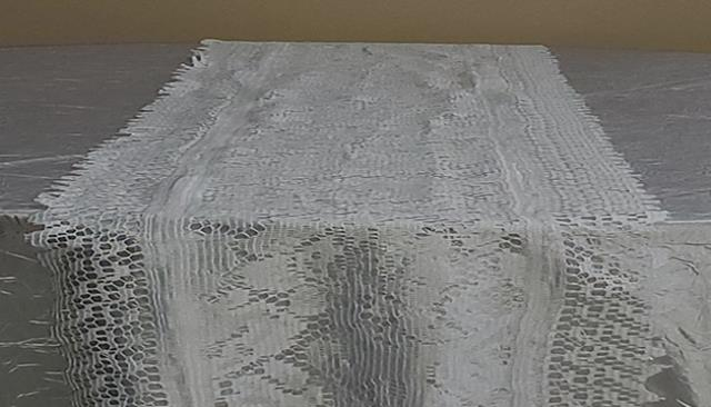 Where to find RUNNER WHITE LACE in Tampa